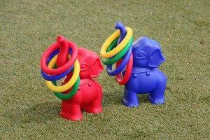 Hire-Elephant-hoops-BT17